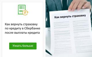 Страховка по кредиту в Сбербанке: как вернуть