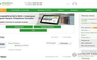 Услуга Мобильный банк Сбербанка и ее особенности