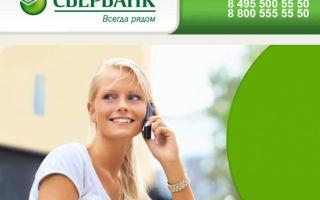 Телефон Сбербанка бесплатный круглосуточный